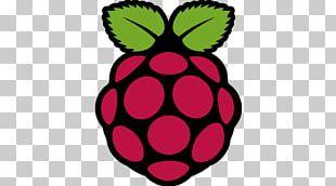 Raspberry Pi Installation Logo Embedded System CentOS PNG