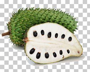 Soursop Juice Durian Fruit Food PNG