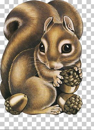 Squirrel Raccoon Paper Thanksgiving PNG