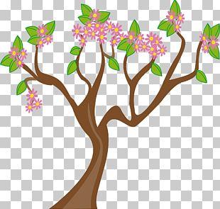 Spring Tree PNG