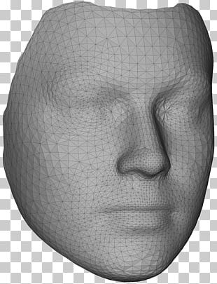 Nose Face Polygon Mesh 3D Modeling Three-dimensional Space PNG