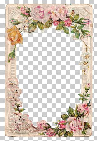 Borders And Frames Frames Rose Flower PNG