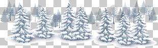 Winter Euclidean Snow PNG
