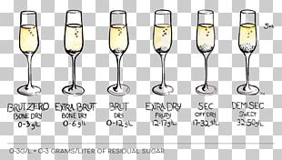 Champagne Glass Sparkling Wine White Wine PNG