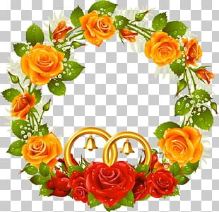 Rose Frames Stock Photography PNG