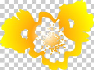 Flower Floral Design Petal Yellow PNG