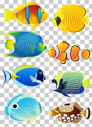 Tropical Fish Angelfish Aquarium PNG