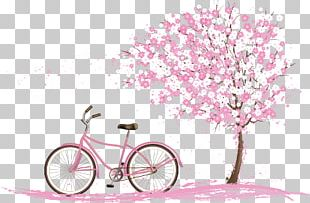 Cherry Blossom Spring PNG