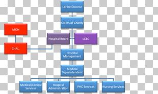 Organizational Structure Hospital Board Of Directors Health Administration PNG