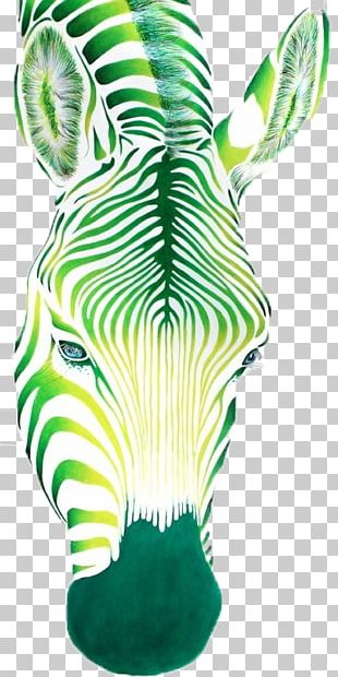 Oil Painting Zebra Drawing PNG