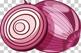 Red Onion Euclidean PNG