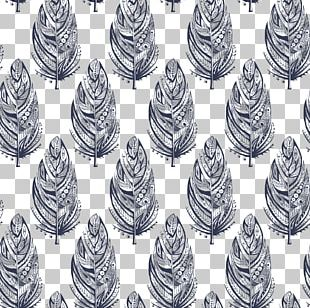 Feather Motif Illustration PNG