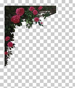 Red Wine Garden Roses Rosé Frame PNG