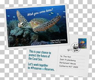 WWF-Australia Great Barrier Reef World Wide Fund For Nature Coral Sea Conservation PNG