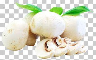 Ingredient Recipe Mushroom Food Vegetable PNG
