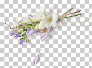 Cut Flowers Artificial Flower Floral Design Petal PNG