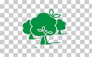 Logo Leaf Brand Font PNG