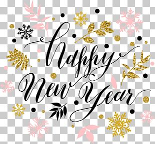 New Years Day Wish New Years Resolution New Year Card PNG