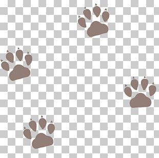 Pet Sitting Dog Cat Puppy Paw PNG