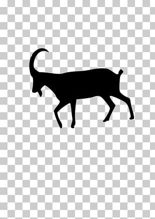 Boer Goat Sheep PNG