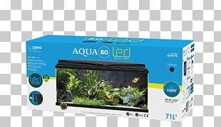 Reef Aquarium Light-emitting Diode Goldfish Fishkeeping PNG