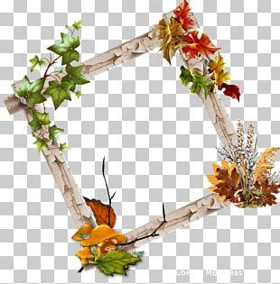 Floral Design Flower Blog Frames PNG