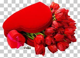 Valentine's Day Tulip Flower Desktop Holiday PNG