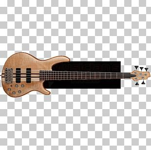 Bass Guitar String Instruments Musical Instruments Cort Guitars PNG