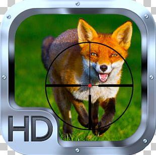 Red Fox Dog Animal Desktop PNG
