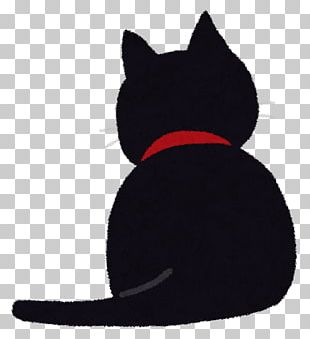 Black Cat Kitten Cat Food Instagram PNG