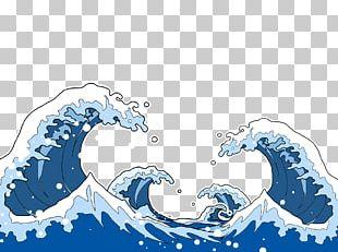Sea Marine Mammal Wind Wave PNG