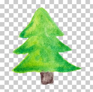 Christmas Tree Watercolor Painting PNG