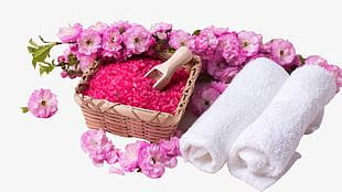 Spa Beauty Element PNG
