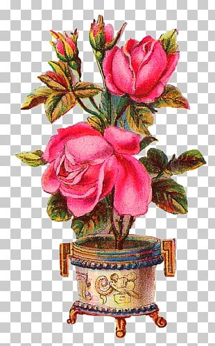Vase Flower Floral Design Rose PNG