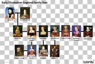Elizabethan Era England The House Of Tudor Wars Of The Roses Family Tree PNG