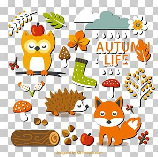 20 Paragraph Autumn Forest Elements Stickers Material PNG
