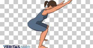 Hip Knee Osteoarthritis Exercise Human Leg PNG