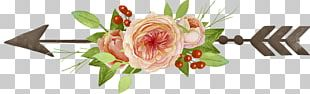 Garden Roses Drawing PNG