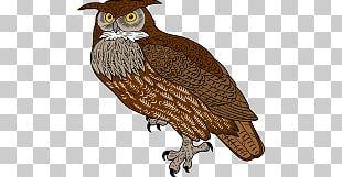 Great Horned Owl Bird Of Prey PNG