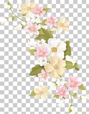 Floral Design Flower Pink PNG
