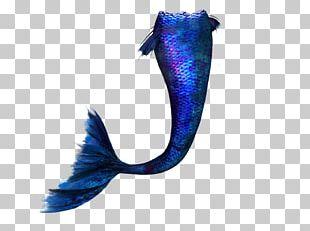 Mermaid PicsArt Photo Studio Editing PNG