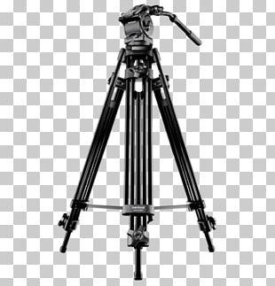 Nikon D3200 Tripod Video Cameras Photography PNG