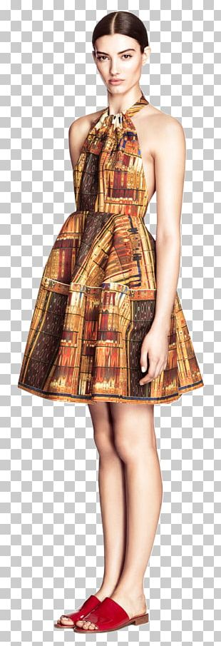 Tracy Reese The Dress H&M Clothing PNG