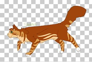 Kitten Whiskers Cat Warriors ThunderClan PNG