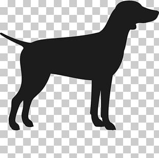 Labrador Retriever Flat-Coated Retriever Dog Breed Puppy German Shorthaired Pointer PNG