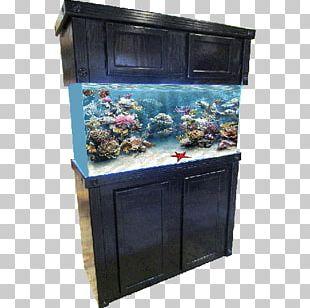 Reef Aquarium Cabinetry Aquarium Furniture Shark Reef At Mandalay Bay PNG