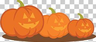 Jack-o'-lantern Pumpkin Winter Squash Carving PNG