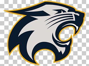 Wildcat Hudson River Falls High School American Football Cheerleading PNG