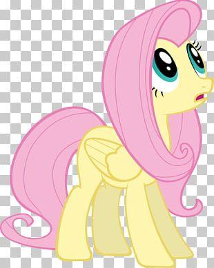 Fluttershy Twilight Sparkle Pinkie Pie Applejack Rainbow Dash PNG