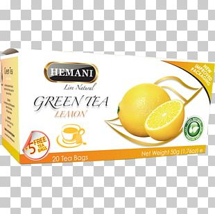 Green Tea Lemon Herbal Tea Tea Bag PNG